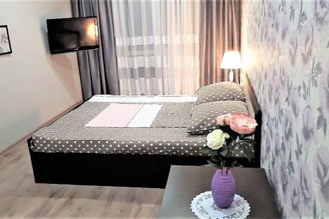 Сдается 1-комнатная квартира посуточно, Советская улица, 123А/1.