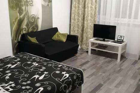 Сдается 1-комнатная квартира посуточно в Ростове-на-Дону, улица Мечникова, 49.