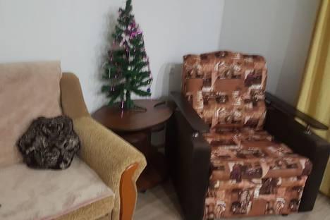 Сдается 1-комнатная квартира посуточно в Тургояке, Миасс, улица Уральских Добровольцев 1 А.