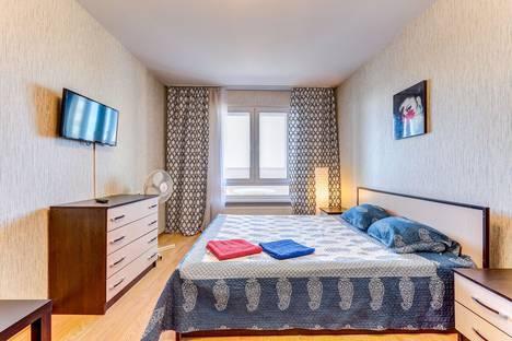 Сдается 1-комнатная квартира посуточно в Санкт-Петербурге, улица Коллонтай, 5/1.