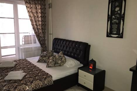 Сдается 1-комнатная квартира посуточно в Санкт-Петербурге, Пулковское шоссе 14 Е.
