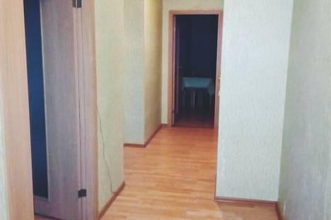 Сдается 2-комнатная квартира посуточно в Шушаре, Пушкин, Ростовская улица, 14-16.