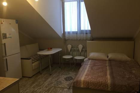 Сдается 1-комнатная квартира посуточно, Красная Поляна.