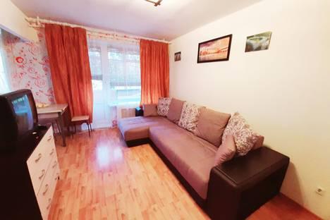 Сдается 2-комнатная квартира посуточно в Пушкине, Ленинградская улица, 65.