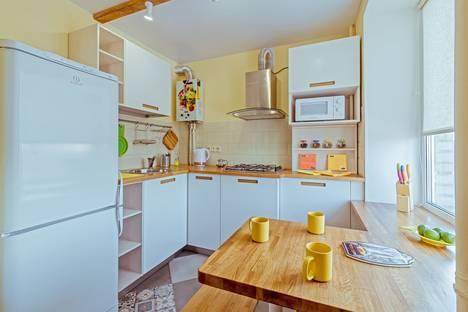 Сдается 1-комнатная квартира посуточно в Санкт-Петербурге, Московский проспект, 205.