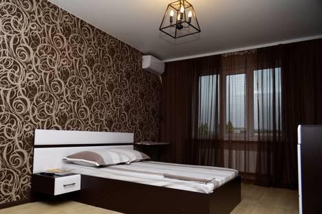 Сдается 1-комнатная квартира посуточно в Воронеже, проспект Ленинский, 124А.