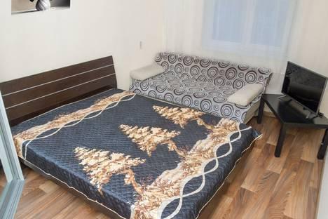 Сдается 1-комнатная квартира посуточно в Челябинске, улица Российская, 275.