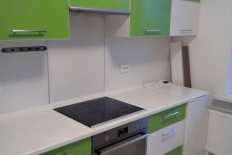 Сдается 1-комнатная квартира посуточно в Шушаре, Санкт-Петербург, Вилеровский переулок, 6.