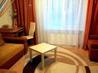 Сдается посуточно 1-комнатная квартира в Несвиже. 30 м кв. Минская область, Несвижский район, Несвиж