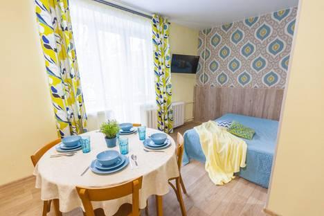 Сдается 1-комнатная квартира посуточно в Пушкине, Московская улица, 49.