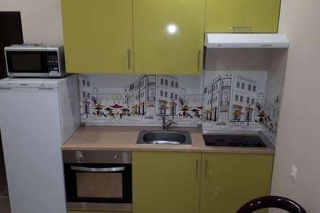 Сдается 1-комнатная квартира посуточно, улица Костычева, 74/1.