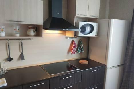 Сдается 1-комнатная квартира посуточно, Санкт-Петербург,Заречная улица, 45к2.