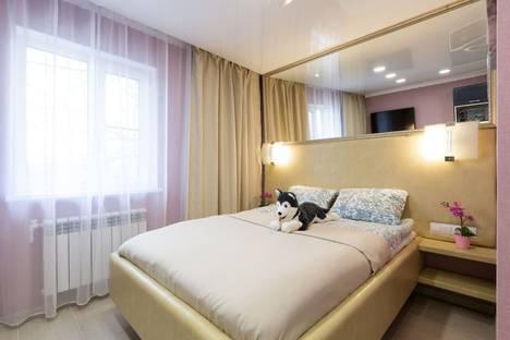 Сдается 1-комнатная квартира посуточно в Балашихе, Московская область,микрорайон Салтыковка, Пионерская улица, 21.