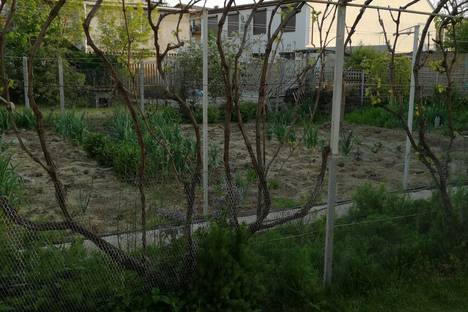 Сдается коттедж посуточно, Севастополь, Нахимовский район, Качинский муниципальный округ,Ударная улица, 10А.