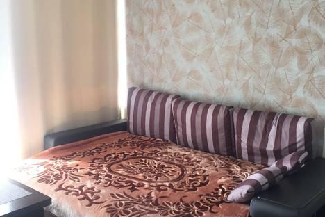 Сдается 1-комнатная квартира посуточно в Сочи, микрорайон Дагомыс, Старошоссейная улица, 5.