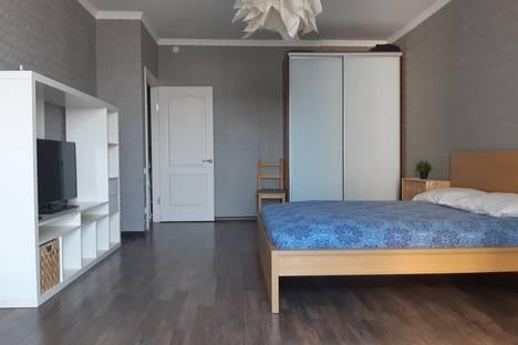 Сдается 1-комнатная квартира посуточно, Античный проспект, 64к1.