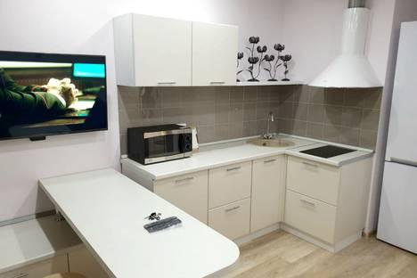 Сдается 1-комнатная квартира посуточно в Новосибирске, улица Немировича-Данченко, 146/2.