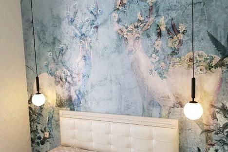 Сдается 2-комнатная квартира посуточно в Благовещенске, улица 50 лет Октября, 71.