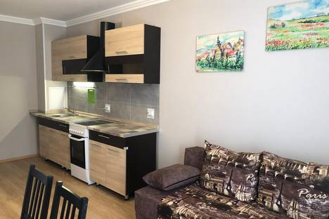 Сдается 1-комнатная квартира посуточно, Ленинградская область, Всеволожский район,улица Шоссе в Лаврики, 59к2.