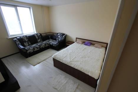 Сдается 1-комнатная квартира посуточно, улица Тухачевского, 49Б.