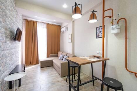 Сдается 3-комнатная квартира посуточно в Красной Поляне, городской округ Сочи,улица Турчинского, 19А.