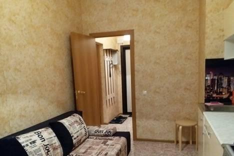 Сдается 1-комнатная квартира посуточно в Шлиссельбурге, Пролетарская ул., 38.