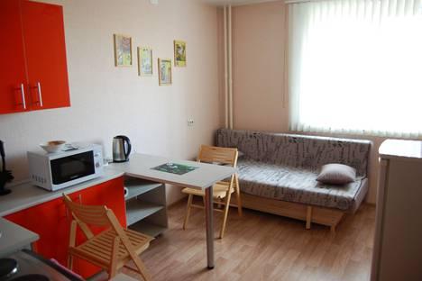Сдается 1-комнатная квартира посуточно, улица Калинина, 181.