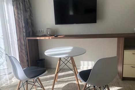 Сдается 1-комнатная квартира посуточно в Сочи, Краснодарский край,микрорайон Светлана, Депутатская улица, 10к3.