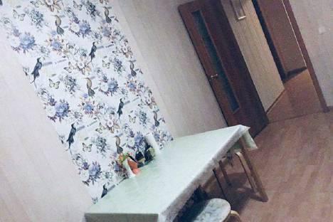 Сдается 2-комнатная квартира посуточно в Шушаре, Санкт-Петербург, Пушкинский район,территория Славянка, Ростовская улица, 26к1.