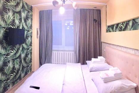 Сдается 2-комнатная квартира посуточно в Брянске, Красноармейская улица, 100,.
