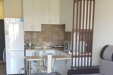 Сдается 1-комнатная квартира посуточно в Сочи, улица Санаторная, дом 46.