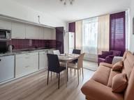 Сдается посуточно 1-комнатная квартира в Екатеринбурге. 45 м кв. улица Степана Разина, 2