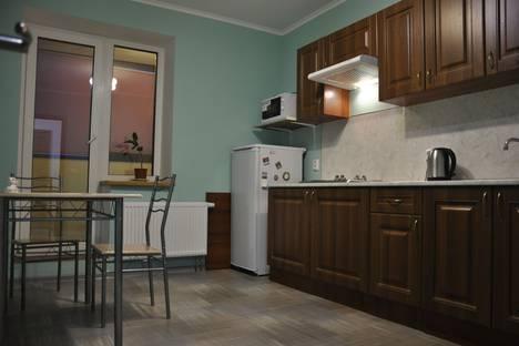 Сдается 1-комнатная квартира посуточно, Ленинградская область, Всеволожский район,улица Шоссе в Лаврики, 55.