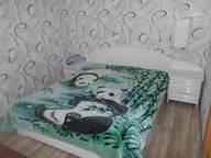 Сдается посуточно 1-комнатная квартира в Пскове. 0 м кв. улица Гагарина, 13