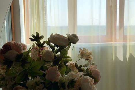 Сдается 1-комнатная квартира посуточно в Солнечногорске, Московская область,Молодежный проезд, 3.