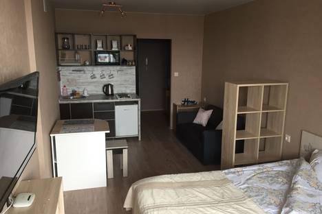 Сдается 1-комнатная квартира посуточно в Воронеже, улица Хользунова, 99Б.