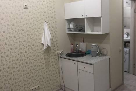 Сдается 1-комнатная квартира посуточно в Сочи, Виноградная 204б.