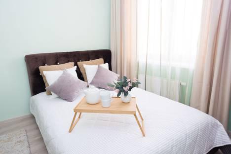 Сдается 2-комнатная квартира посуточно в Екатеринбурге, улица Репина, 52.