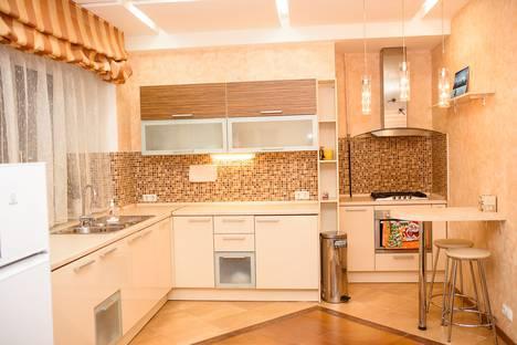 Сдается 1-комнатная квартира посуточно в Санкт-Петербурге, Троицкая площадь Петроградской стороны, 1.