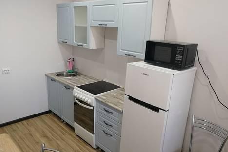 Сдается 1-комнатная квартира посуточно, улица Чертыгашева, 166.