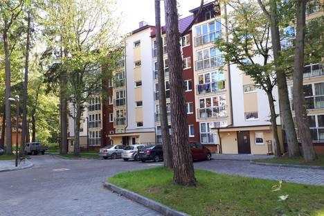 Сдается 1-комнатная квартира посуточно в Светлогорске, улица Токарева, 6А.