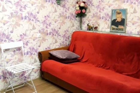 Сдается 1-комнатная квартира посуточно в Санкт-Петербурге, Большая Зеленина ул., 8.