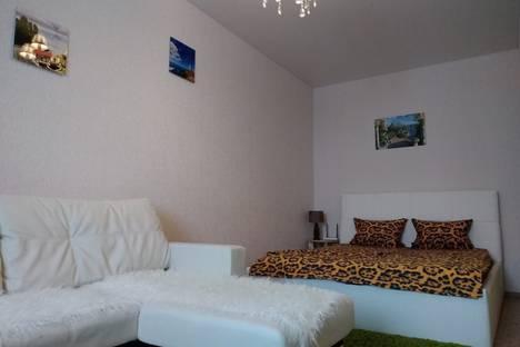 Сдается 1-комнатная квартира посуточно в Воронеже, жилой массив Олимпийский, 13.