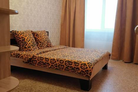 Сдается 2-комнатная квартира посуточно в Воронеже, жилой массив Олимпийский, 13.