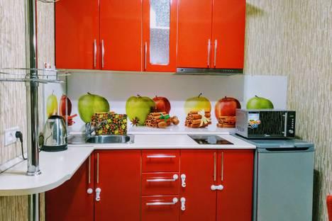Сдается 1-комнатная квартира посуточно в Красноярске, Советский район, микрорайон Северный, улица Водопьянова, 5.