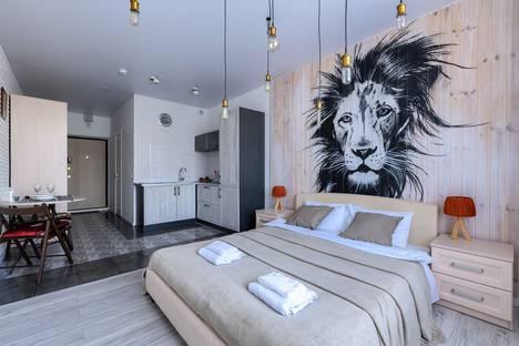 Сдается 1-комнатная квартира посуточно в Санкт-Петербурге, улица Савушкина, 104.