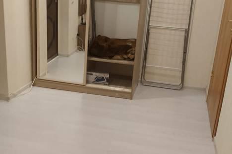Сдается 2-комнатная квартира посуточно в Сочи, Центральный район, Виноградная улица, 206.