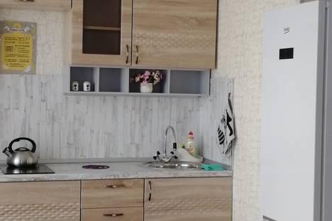Сдается 1-комнатная квартира посуточно в Барнауле, Взлётная улица, 115.