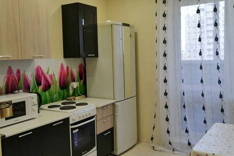 Сдается 1-комнатная квартира посуточно, улица Пирогова, 1к6.