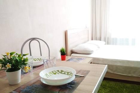 Сдается 1-комнатная квартира посуточно в Екатеринбурге, улица Академика Шварца, 2к2.